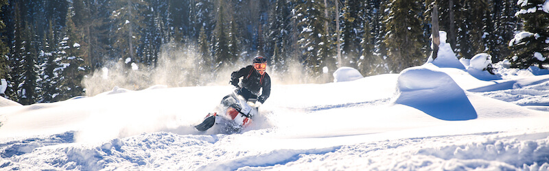 Snowmobile Rental Pricing Montana