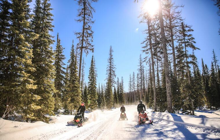 Half-Day Snowmobile Tours